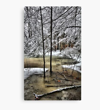 Late February Snowfall - A Hint of Color Canvas Print