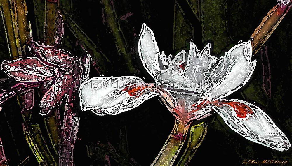 water lily by Kris McD / RockStarStylist
