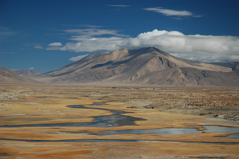 Wild Tibet by Peter Gostelow