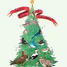 The Twelve Birds of Christmas by Holly Faulkner