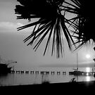 Foggy Biloxi Sunset in Mono by Jonicool