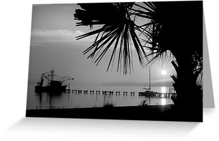 Foggy Biloxi Sunset in Mono by Jonicool