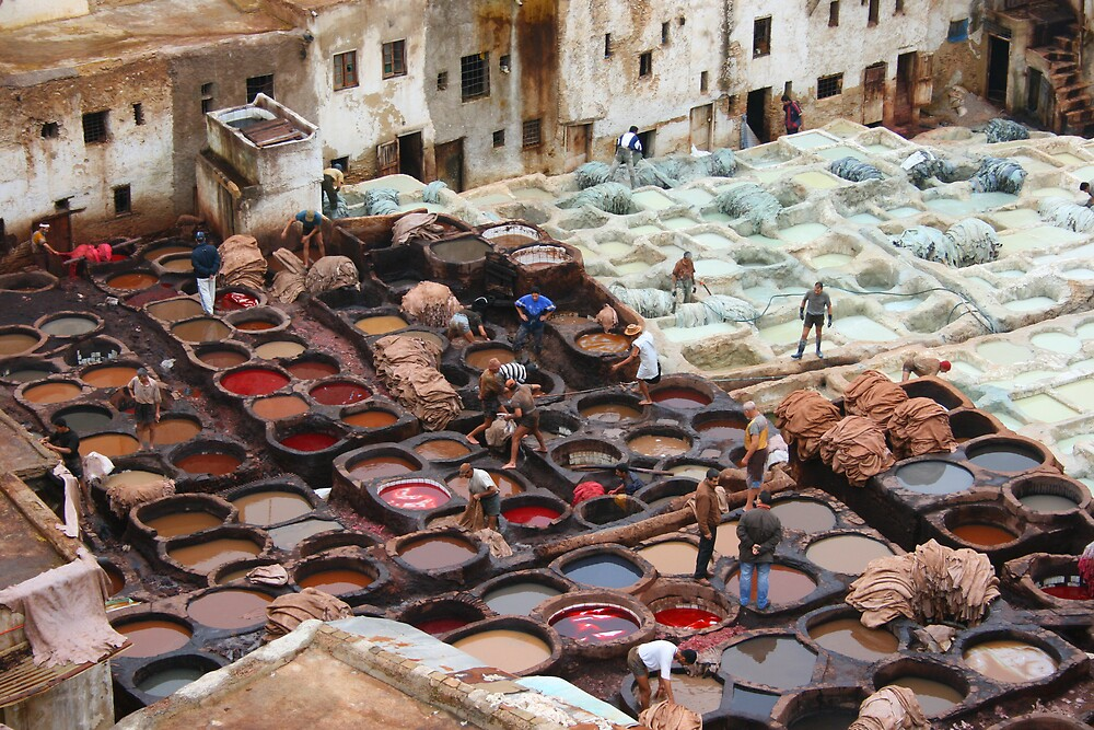 Tanneries by Michelle Thomson
