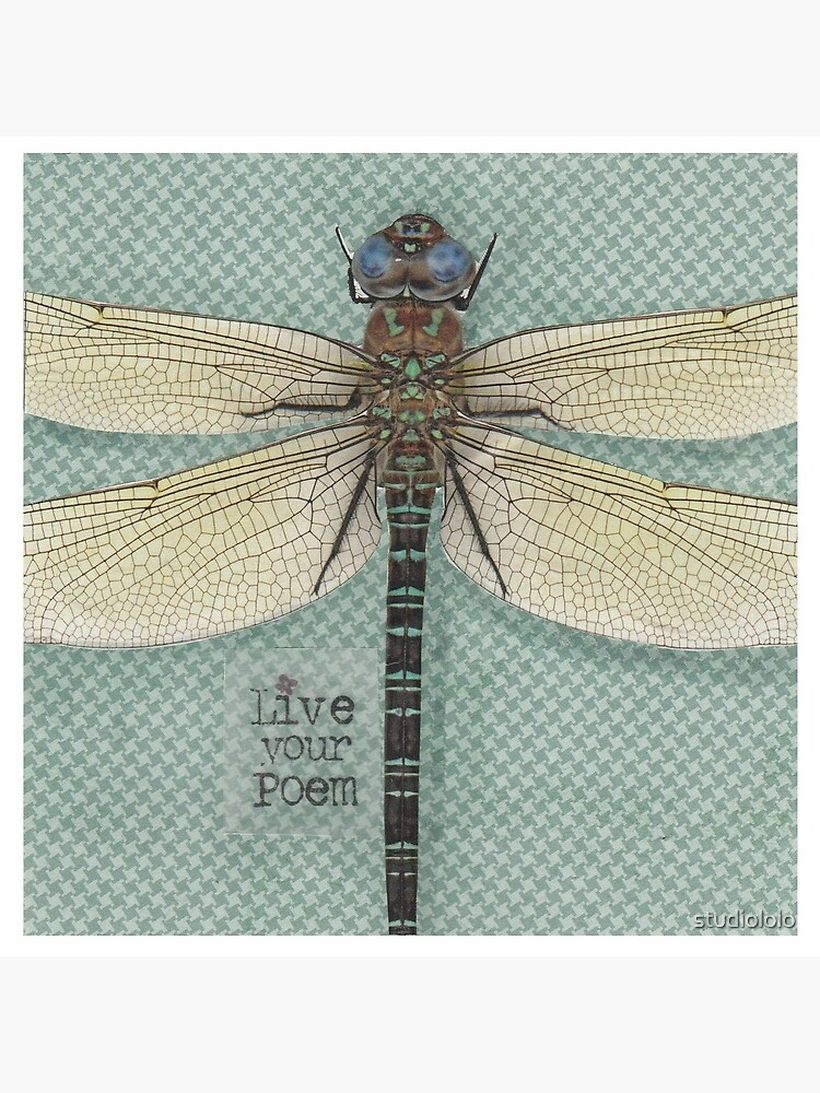 Dragonfly mixed media poem quote by studiololo