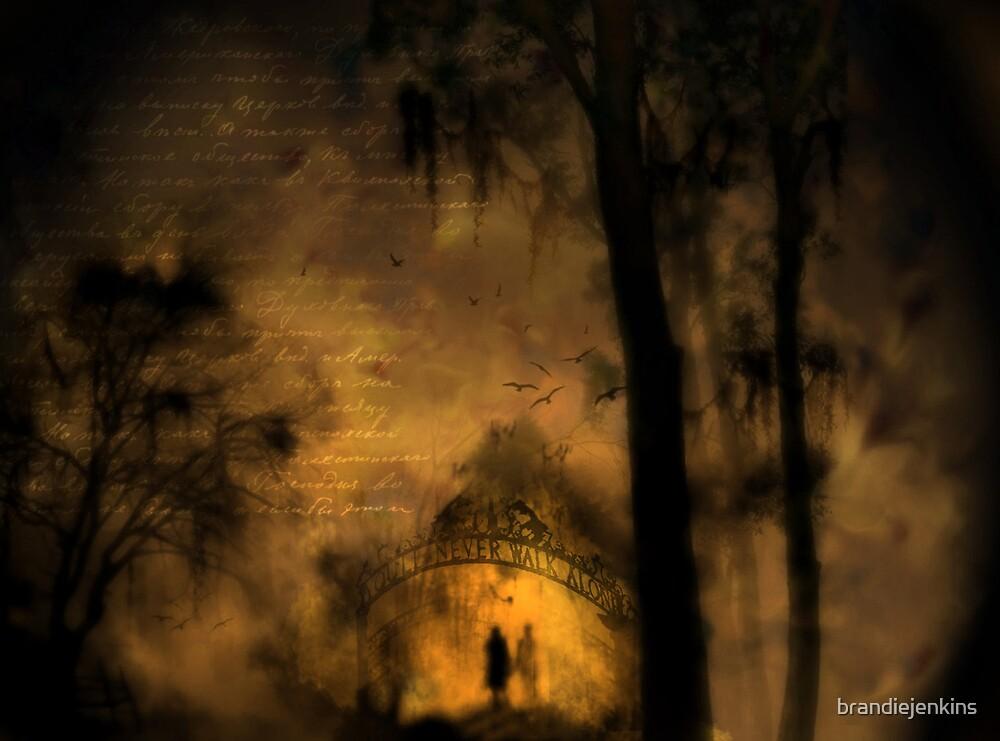 You'll never walk alone... by brandiejenkins