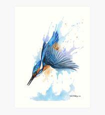Diving Kingfisher Art Print