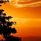 sunset sky by PeaceM