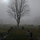 Fog and Graves by Robert Goulet
