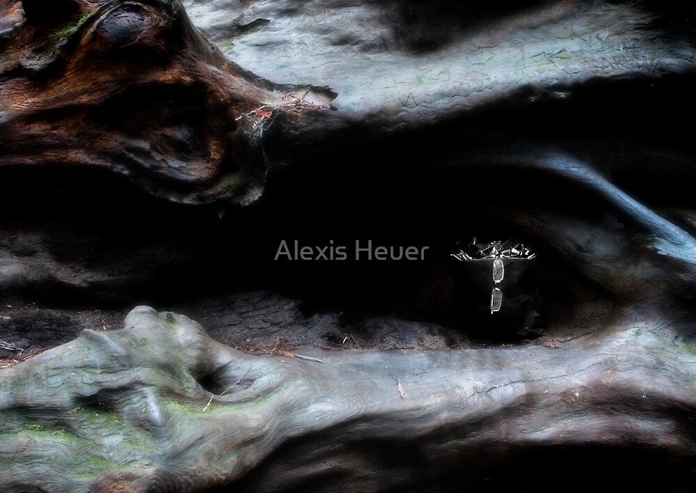 A Low Growl by Alexis Heuer