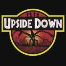 Welcome to, The Upside Down by evodahis