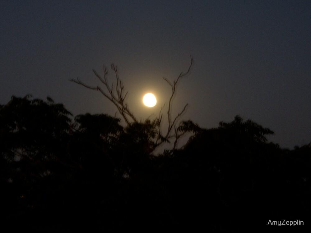 Yellow Moon Over South Yarra by AmyZepplin