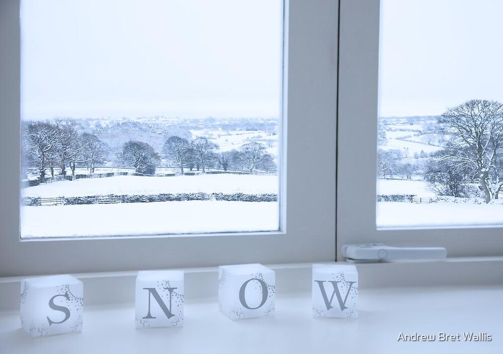 Snow by Andrew Bret Wallis