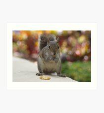 squirrel grabbing peanuts Art Print