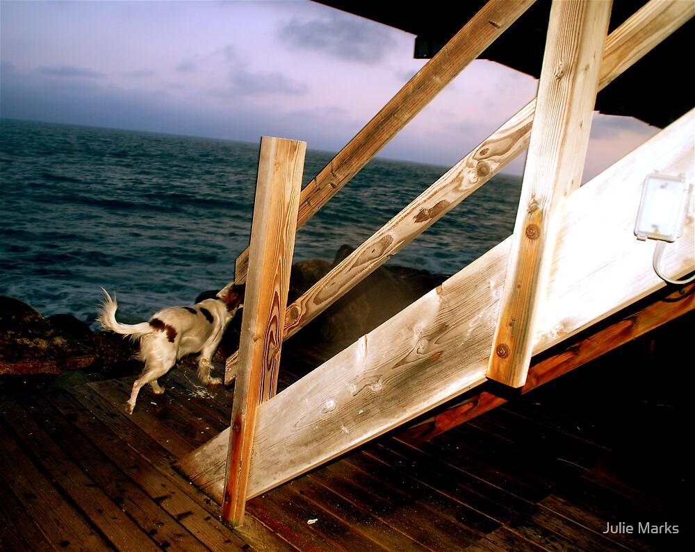 Night Ocean by Julie Marks