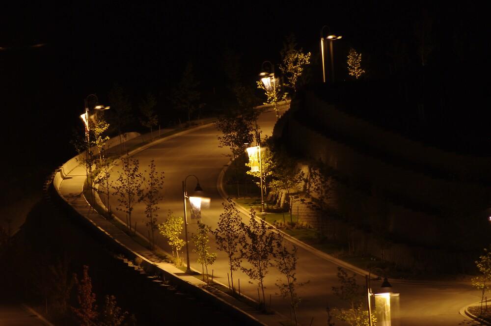 Quiet Night by WhiteLily