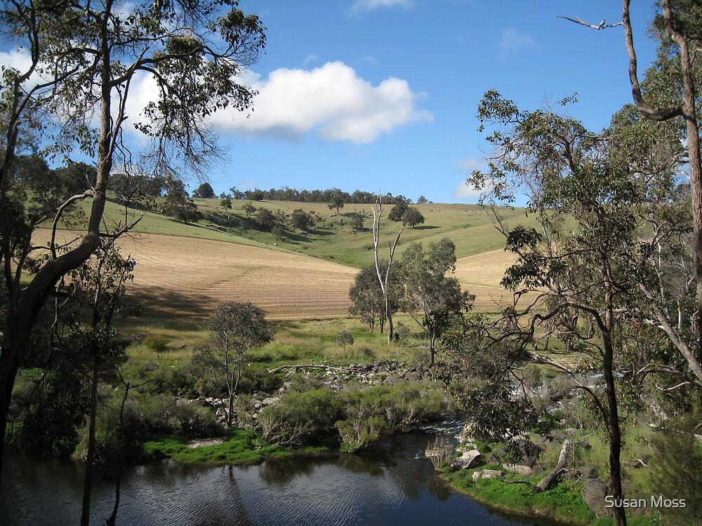 Rural South Western Australia by Susan Moss
