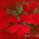 Floral January by EnchantedDreams