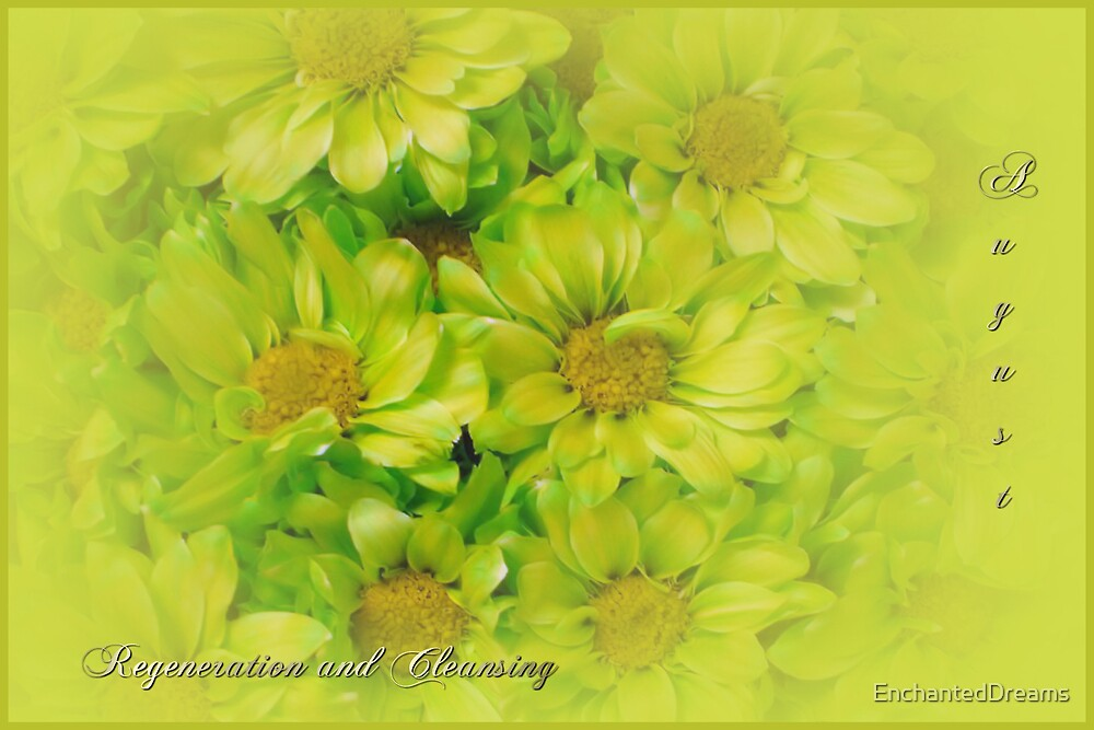 Floral August by EnchantedDreams