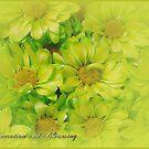 Floral August by EnchantedDreams