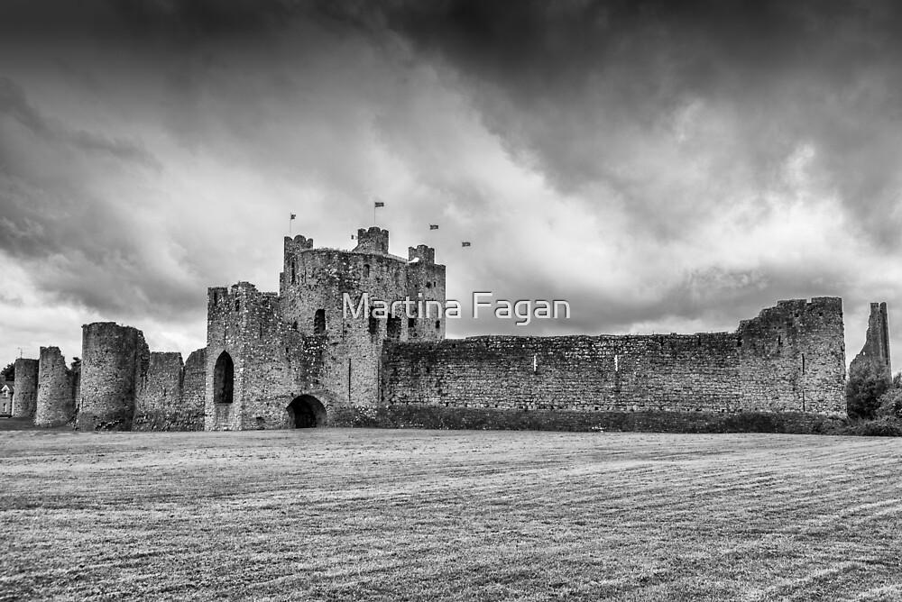 Trim Castle , Co Meath by Martina Fagan