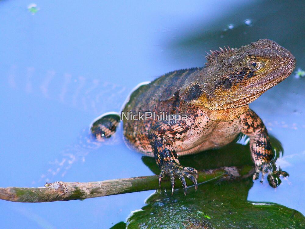Water Dragon by NickPhilippa