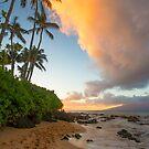 Napili Bay, Maui, Hawaii by Barb White