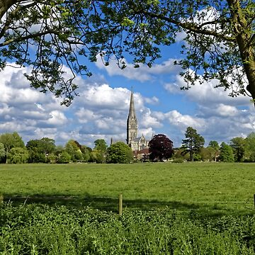 Salisbury Cathedral, Wiltshire, United Kingdom. by AndyHkr