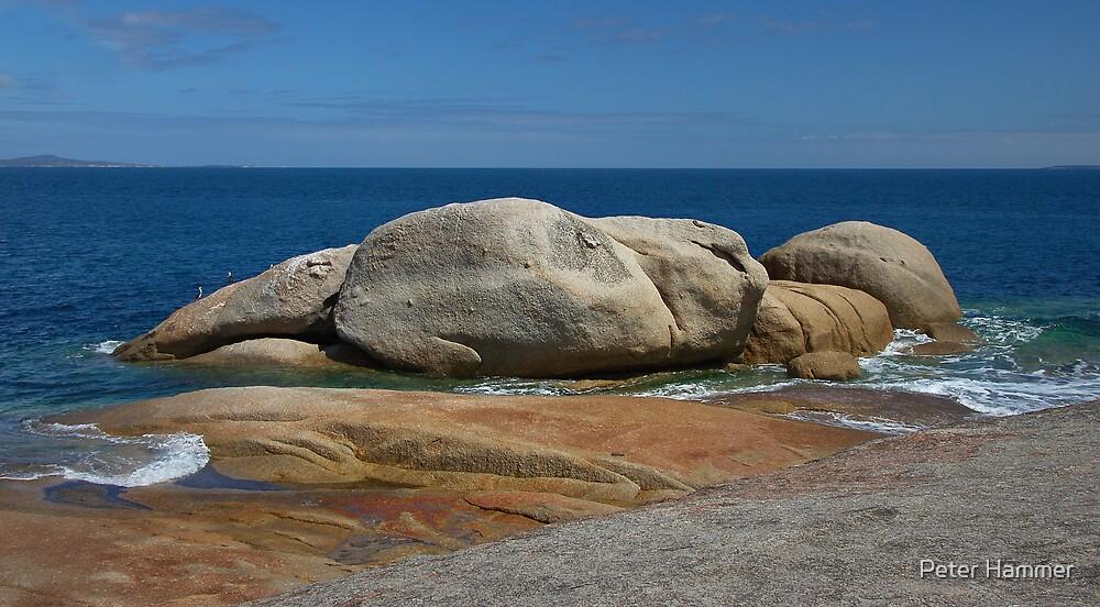 Rocks by Peter Hammer
