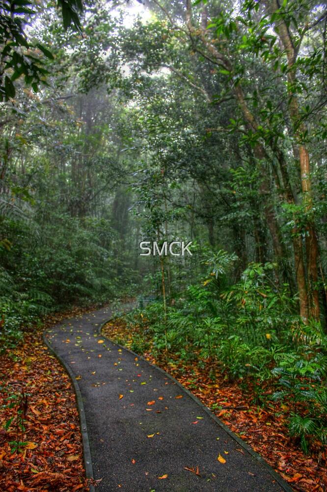Rainforest walk by SMCK