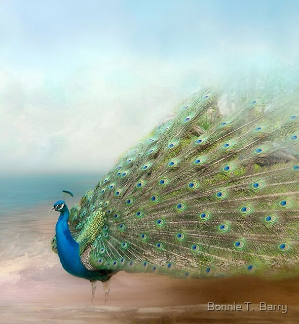 A Peacock's Beauty  by Bonnie T.  Barry