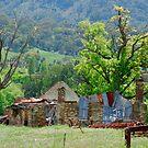 Once Was Grand - Murrurundi NSW by Bev Woodman