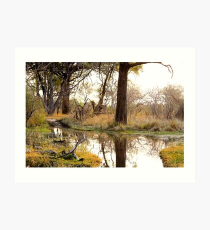 Waterhole at dusk Art Print