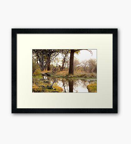 Waterhole at dusk Framed Print