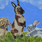 A field of Bunnies by EmilySutin