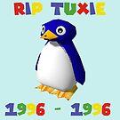 Mario 64 - Tuxie der Pinguin von Nipp3