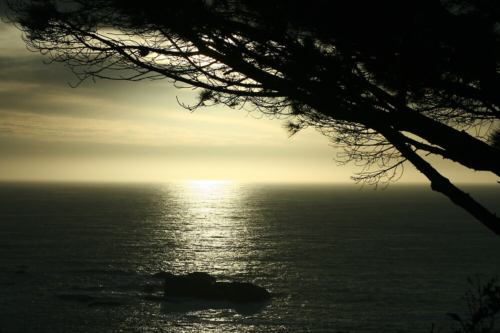 Camps Bay Sunset by rozi