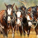 Clydesdale Conversation by Trudi's Images