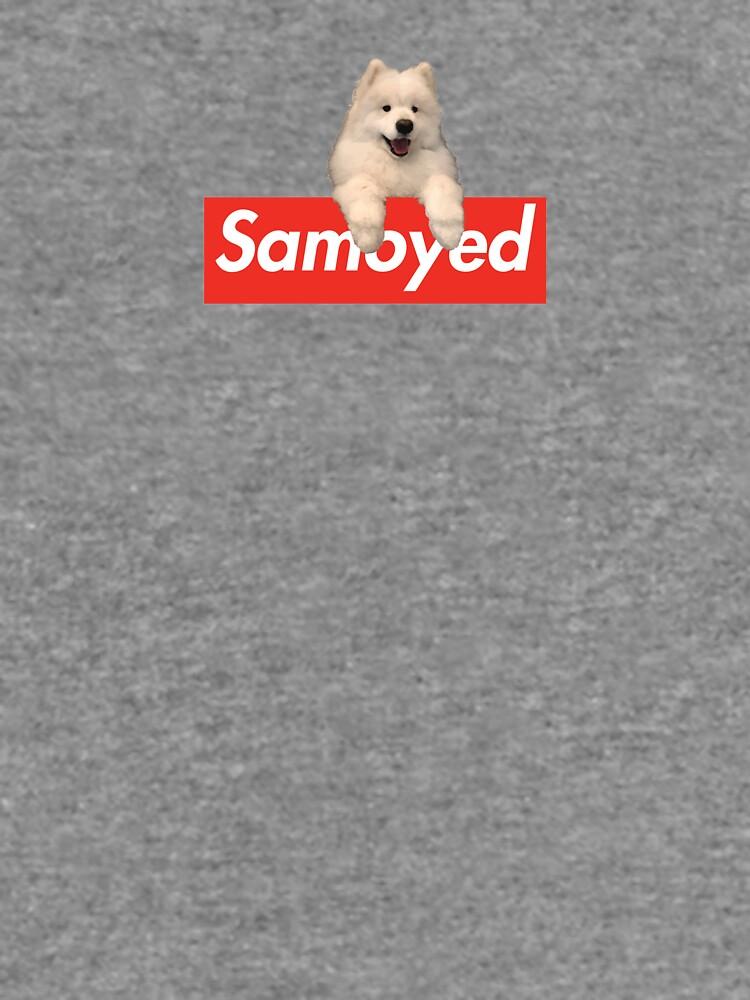 Samoyed x Hypebeast Brand collab de ryderthesamoyed