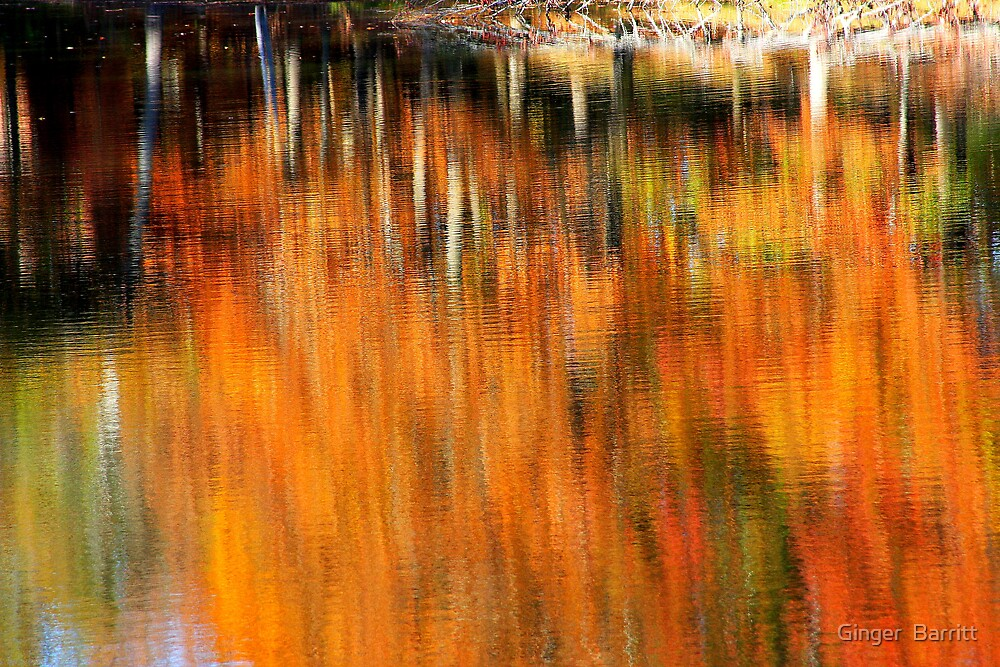 Autumn Reflection by Ginger  Barritt