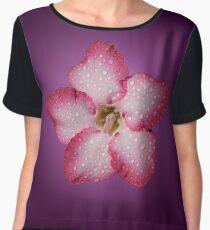 Adenium Pink Flower Flora Gradient Violet Chiffon Top