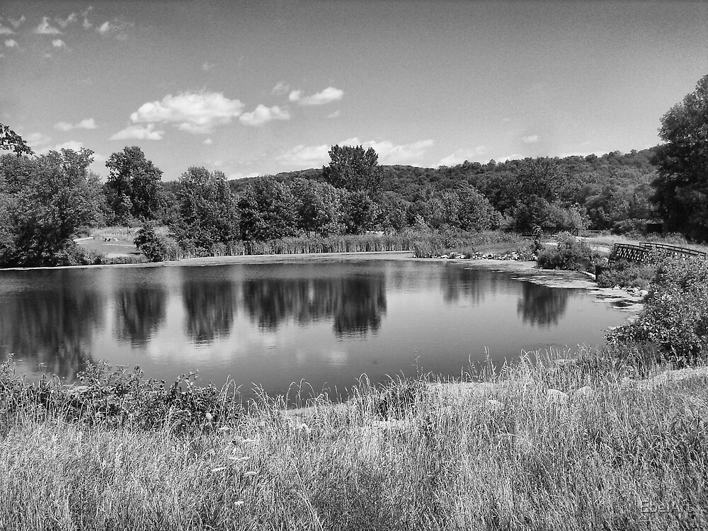 High Cliff State Park III by EbelArt