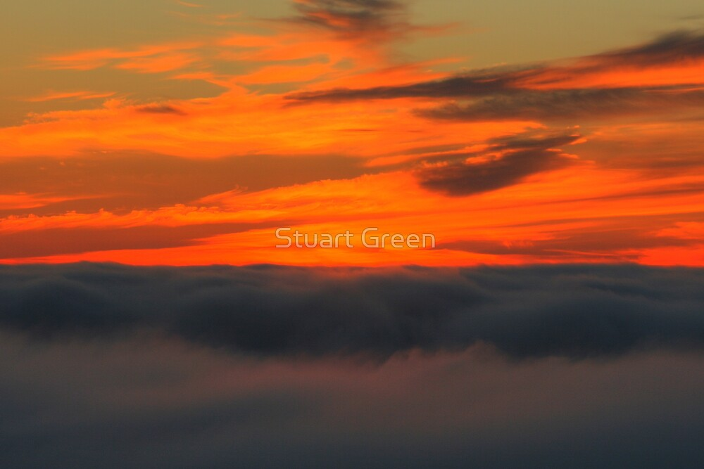 When The Fog Rolls In by Stuart Green