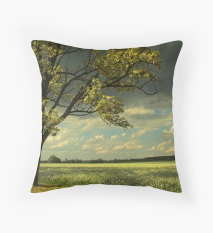 Stormtime Throw Pillow