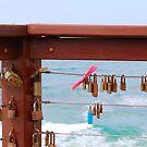 North Burleigh Love Locks by Robyn Williams