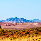 Desert of Namibia by Marylou Badeaux