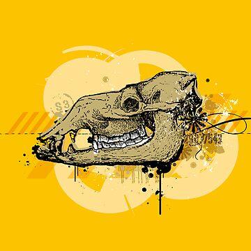 Skully by RBBll