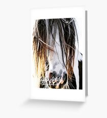 Cool hair, don't care! Greeting Card