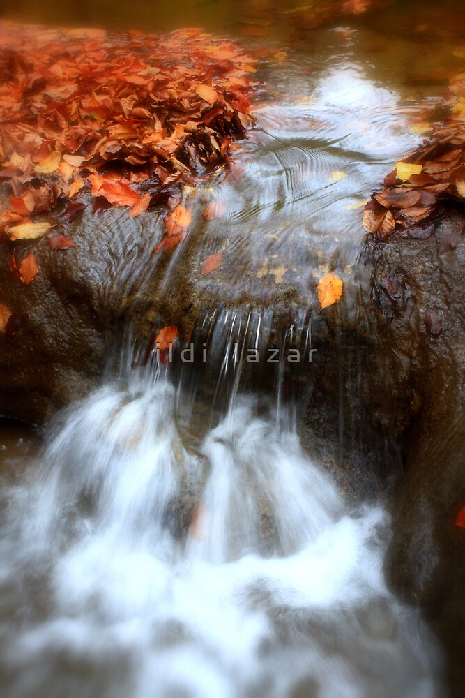 Water in motion by i l d i    l a z a r