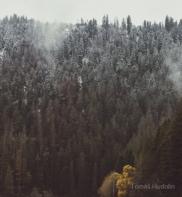 Two seasons by Tomáš Hudolin