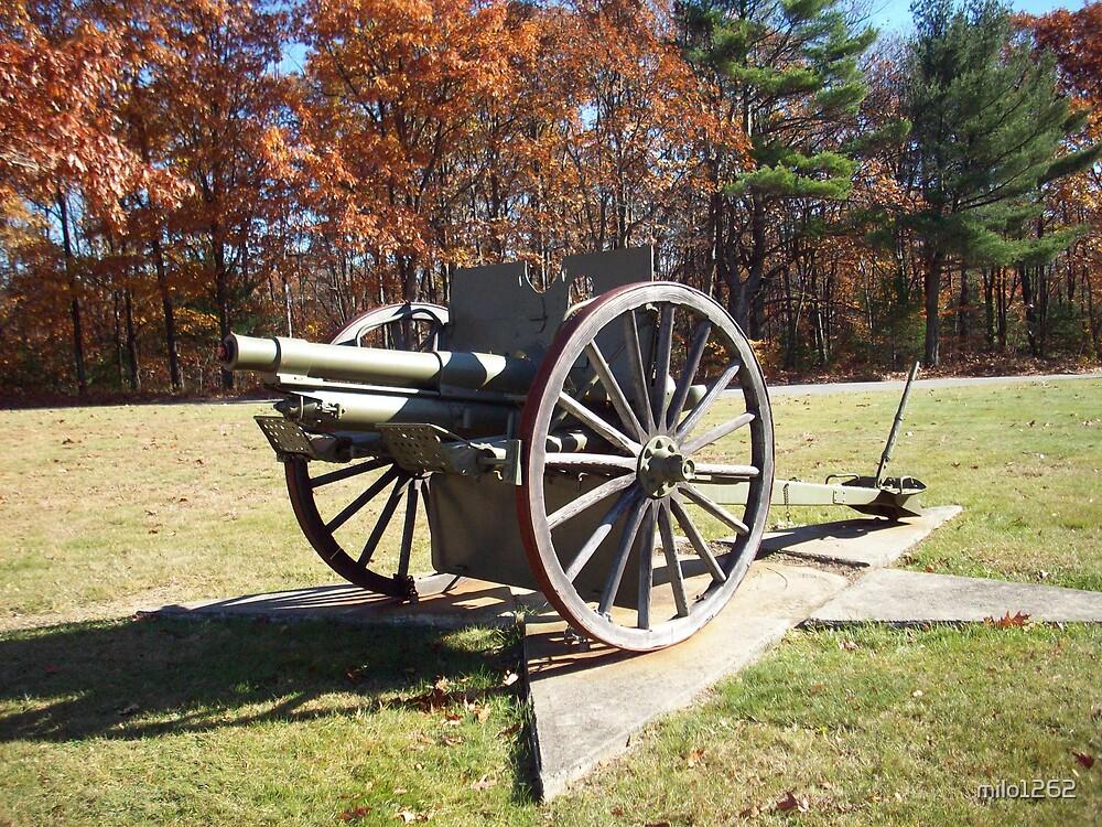 Artillery Cannon by milo1262